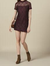 Vestido corto de encaje : Vestidos color Ciruela